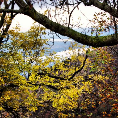 Lago di Varese visto dal Sacro Monte (inviata tramite iPhone app)