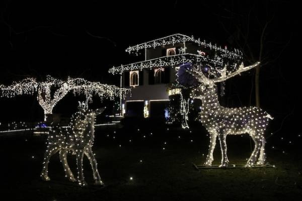 Le 85 mila luci di Natale (inserita in galleria)