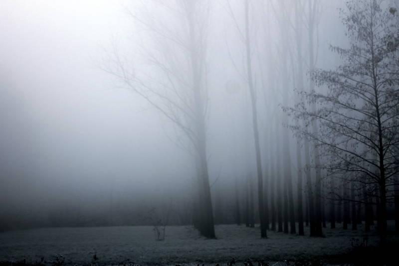 Nebbia e ghiaccio