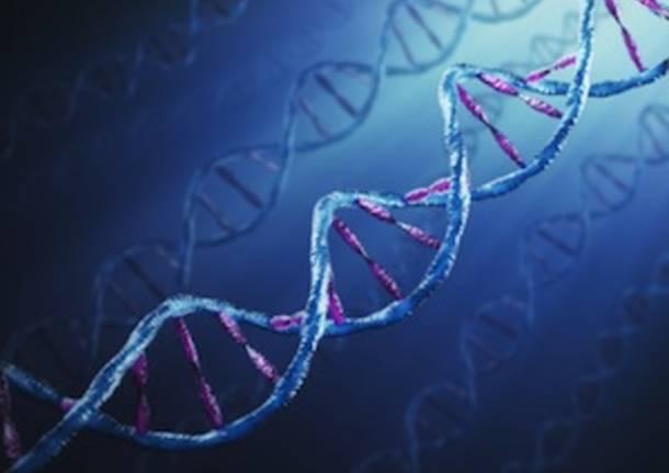sequenza dna genetica