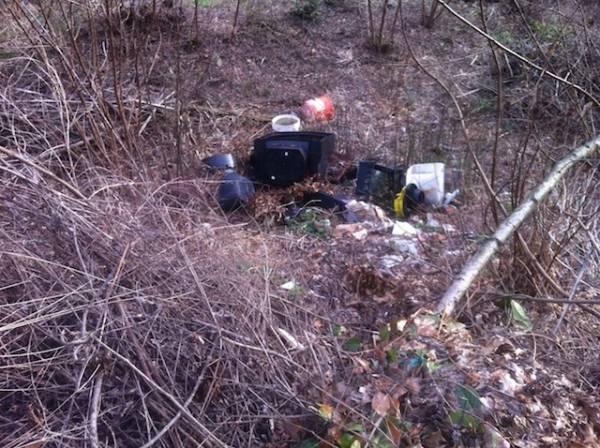 Che brutto spettacolo quei rifiuti nel fiume  (inserita in galleria)