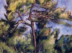 Come conoscere un albero  (inserita in galleria)