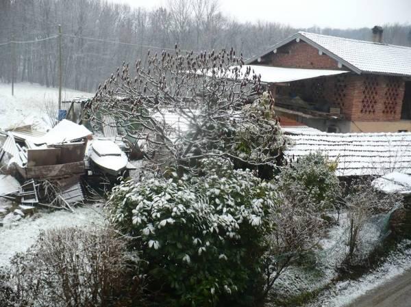 La prima neve nel 2014 (inserita in galleria)