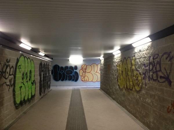 La stazione di Cavaria e i guai agli ascensori (inserita in galleria)