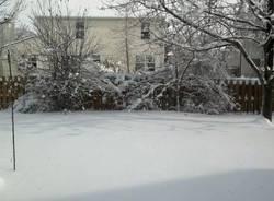 Usa al gelo, le foto dei varesini (inserita in galleria)