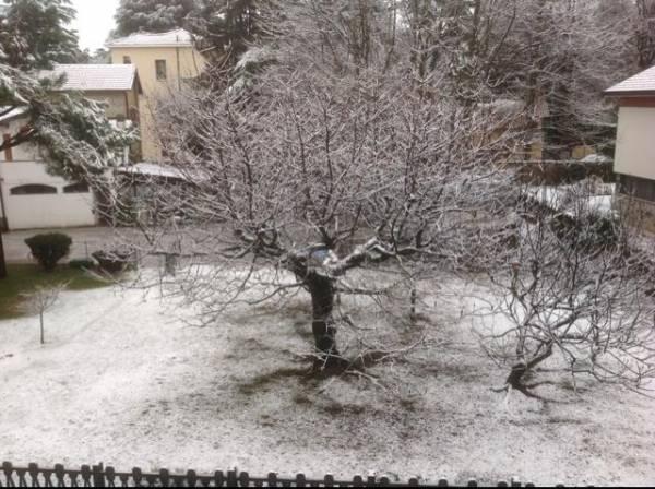 varese neve gennaio 2014 (per gallerie fotografiche)