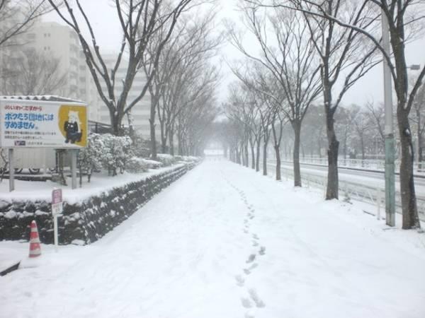 Anche a Tokio nevica...  (inserita in galleria)