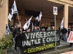 Animalisti manifestano davanti ai laboratori dell'Insubria (inserita in galleria)