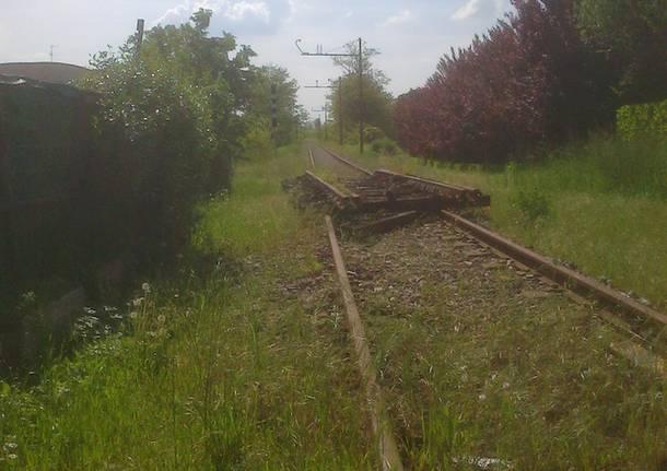 ferrovia saronno seregeno