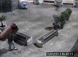 Il furto del tappeto a Gallarate (inserita in galleria)