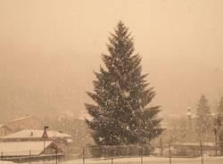 Nevica in Valmarchirolo (inserita in galleria)