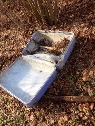 Valige e vecchi computer abbandonati nei boschi (inserita in galleria)