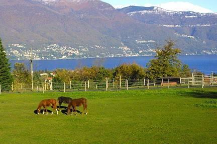 Il ranch di Daniele Santucci a Castelveccana (inserita in galleria)