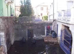 Pulizia del lago a Porto Ceresio (inserita in galleria)