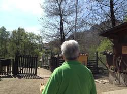 Il Rifugio degli Animali Felici a Brissago Valtravaglia  (inserita in galleria)