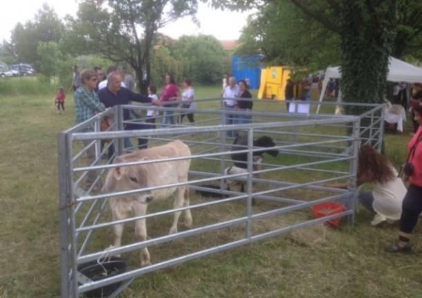Agrifest 2014, un successo tra animali, torte e divertimento (inserita in galleria)