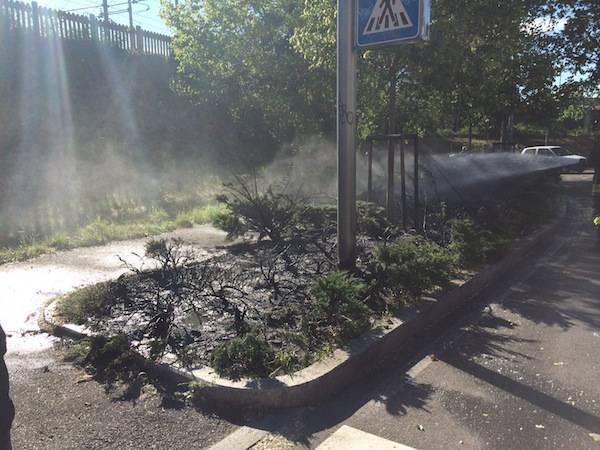 Incendio vicino all'Esselunga a Gallarate (inserita in galleria)