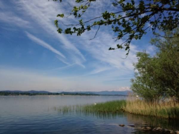 Panorami di lago (inserita in galleria)