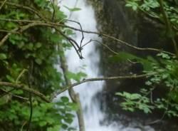 parco campo dei fiori cascata vellone