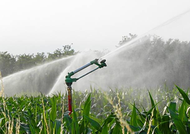 agricoltura irrigazione campi