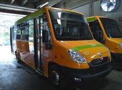 amsc nuovi autobus