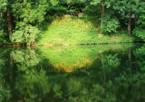 riflessi nel lago di Brinzio