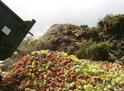 sprechi spreco alimentare cibo buttato