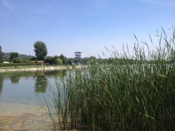 Un pomeriggio al lago (inserita in galleria)