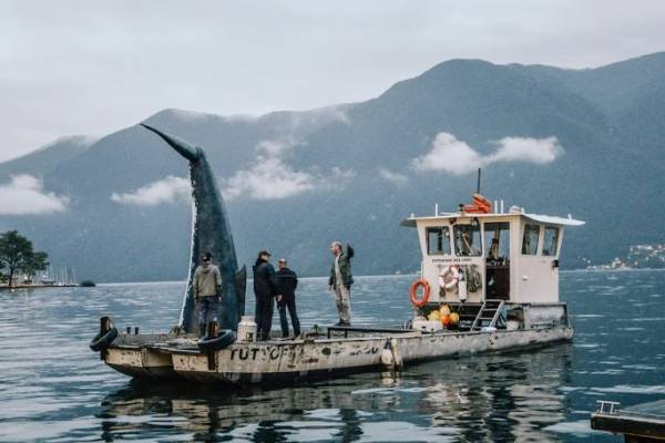 C'è una balena nel lago di Lugano (inserita in galleria)