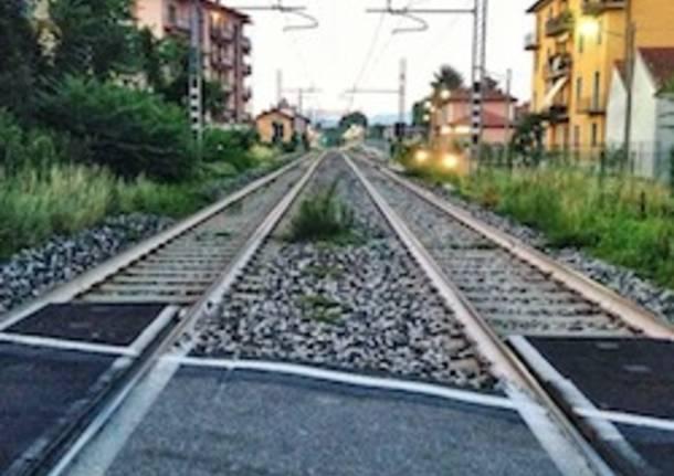 ferrovia gazzada reggio