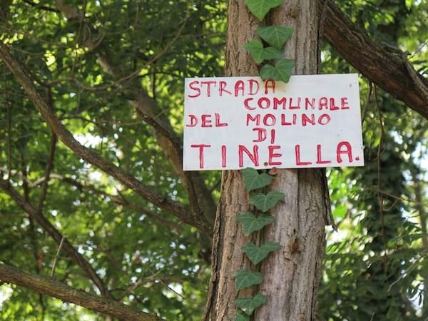 La strada del mulino di Tinella (inserita in galleria)