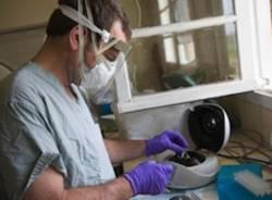 medico screening ricerca provette ebola