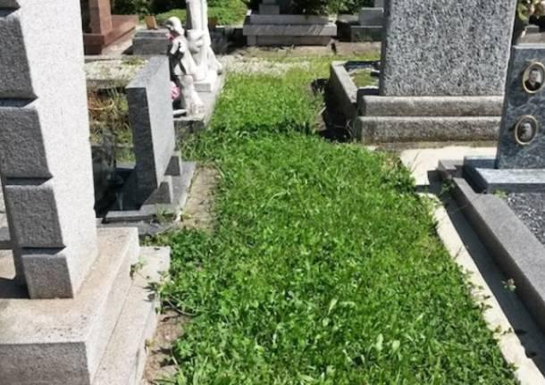 Gemonio - Degrado al cimitero (inserita in galleria)
