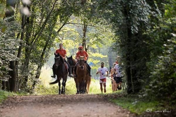 Varese, cavalli e natura (inserita in galleria)