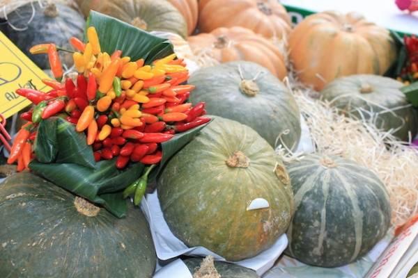 Festa d'autunno (inserita in galleria)