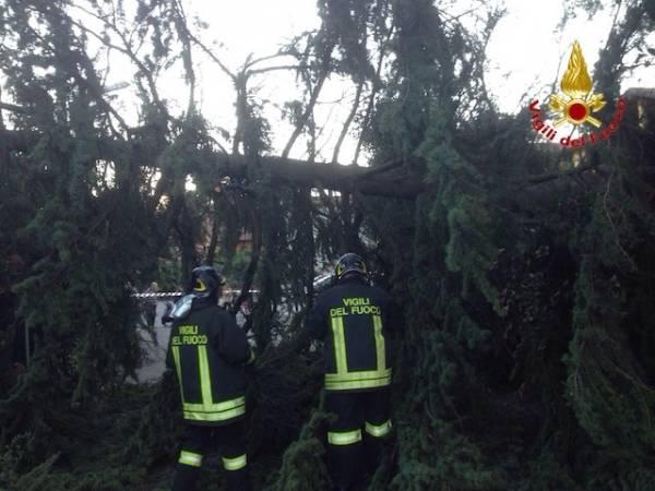 Gli interventi dei Vigili del fuoco per il vento  (inserita in galleria)