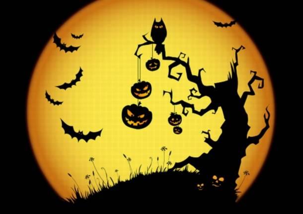 halloween gallarate bambini