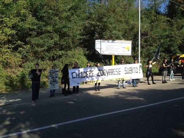 """Il Fronte Animalista torna a protestare davanti allo """"Zoo Varese""""  (inserita in galleria)"""