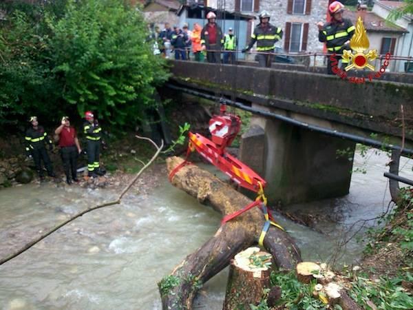 Operazioni di recupero di un grosso tronco di albero (inserita in galleria)