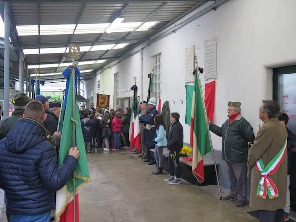 4 novembre a Cedrate di Gallarate (inserita in galleria)