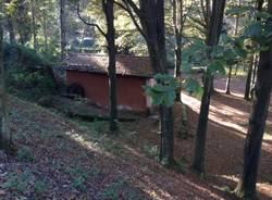 Il parco dell'Argentera (inserita in galleria)