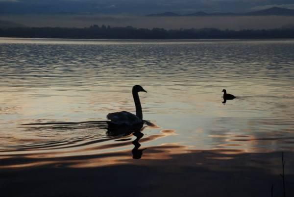 La meraviglia del lago al tramonto (inserita in galleria)