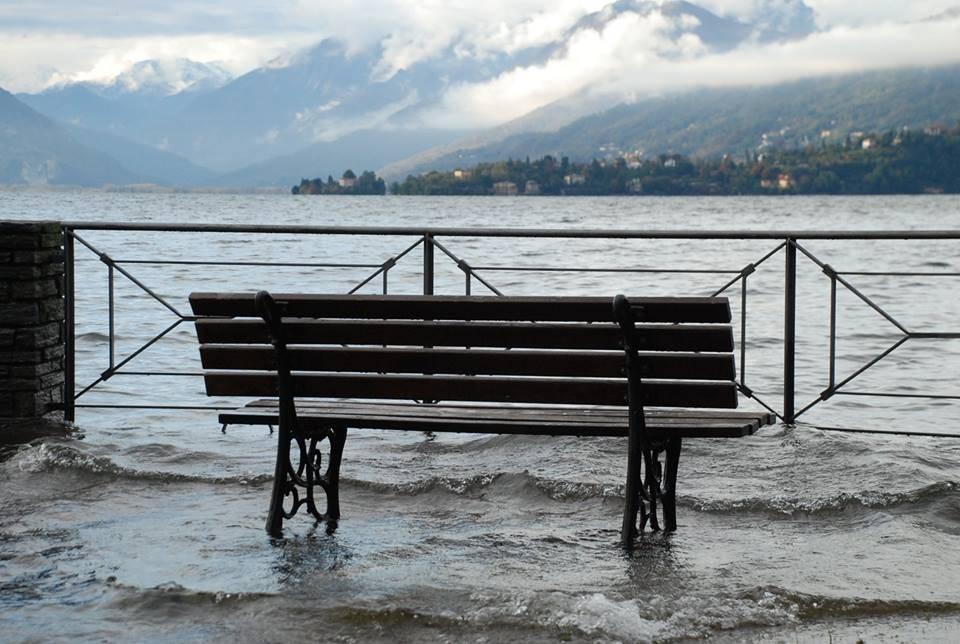 La panchina dentro il lago