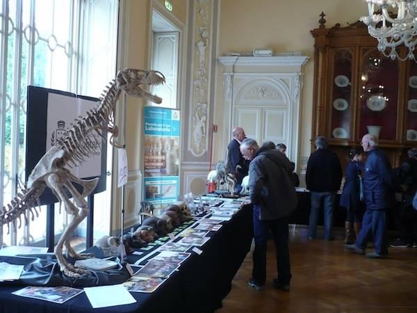 Mostra dei Minerali e dei Fossili a Ville Ponti  (inserita in galleria)