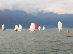 regata velica vela classe meteor luino 2014