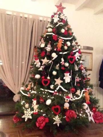 Gli alberi di Natale dei nostri lettori  (inserita in galleria)