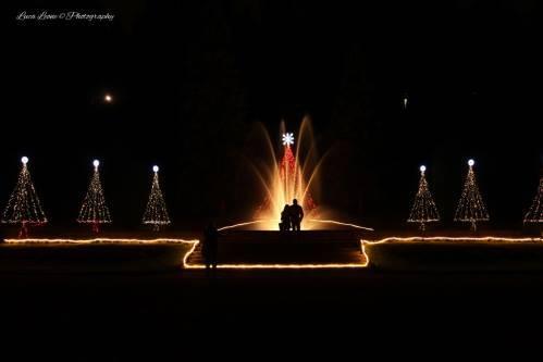 I Giardini illuminati per Natale (inserita in galleria)