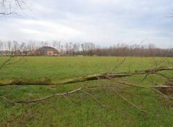 Il Parco Alto Milanese