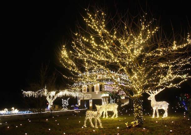 Foto Di Luci Di Natale.Le Luci Natalizie Di Leggiuno Si Faranno