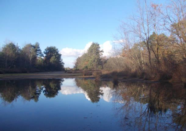 Un lago in brughiera (inserita in galleria)